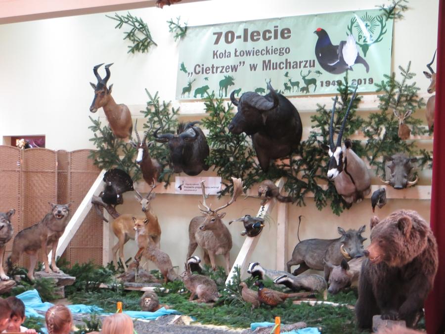 Żywa lekcja przyrody - 70-lecie Koła Łowieckiego